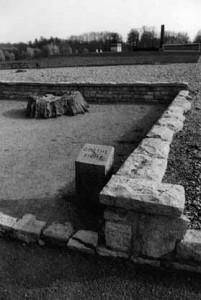 Un gros chêne, signalé comme tel (dicke Eiche) sur les cartes, avait été laissé par les SS sur l'aire du camp. En 1944, il est endommagé par une bombe, puis abattu. Seule la souche est préservée. Les détenus l'avaient baptisé le « chêne de Goethe ». Mais l'arbre n'avait en fait aucun rapport avec celui auprès duquel se promenait l'écrivain qui se trouvait d'ailleurs être un banal hêtre planté dans un tout autre endroit. Voir sur ce point-là l'explication aussi éclairante que subtile de Jean-Pierre Lefebvre dans Goethe modes d'emploi (Belin, 2000).
